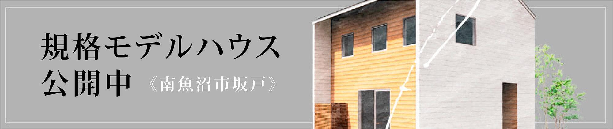 規格住宅f